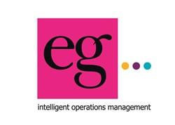 eg solutions plc